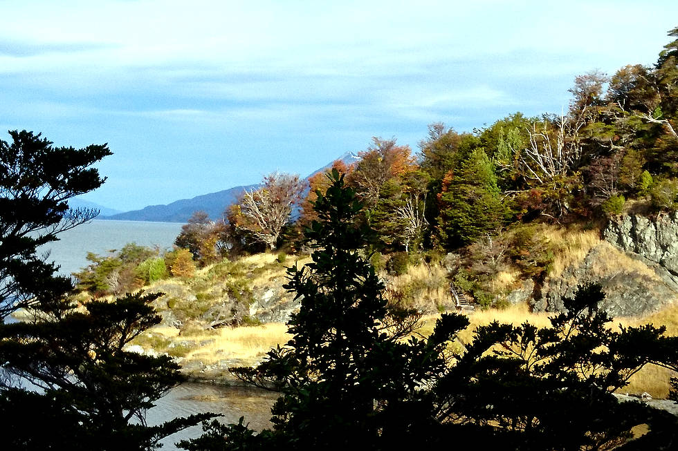 National park Tierra del Fuego