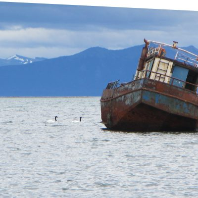 Some impressions of the beautiful landscape on the way to Puerto Natales. Photo: Alica Ohnesorge
